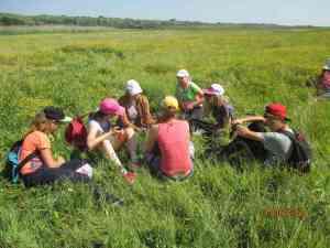 Вивчення флористичного різноманіття біля Казачого лиману